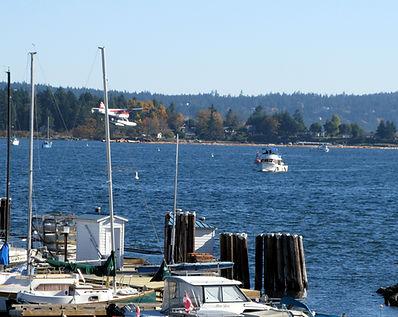 8-10-22 3 busy harbour.jpg