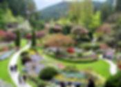 9-5-8 2 sunken garden.jpg