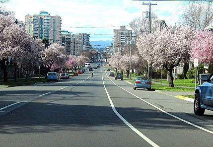 v10-2-28 10 Pandora street.jpg