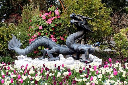 4-4 dragon.jpg