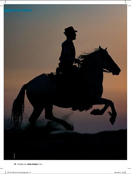 cheval pratique p1.JPG
