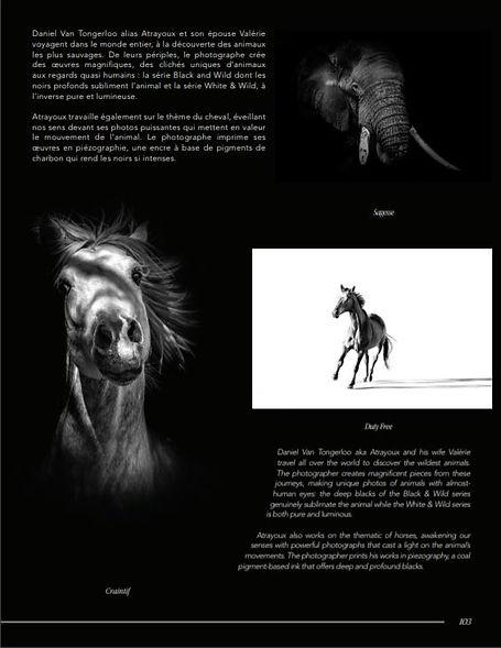 art et design p2.JPG