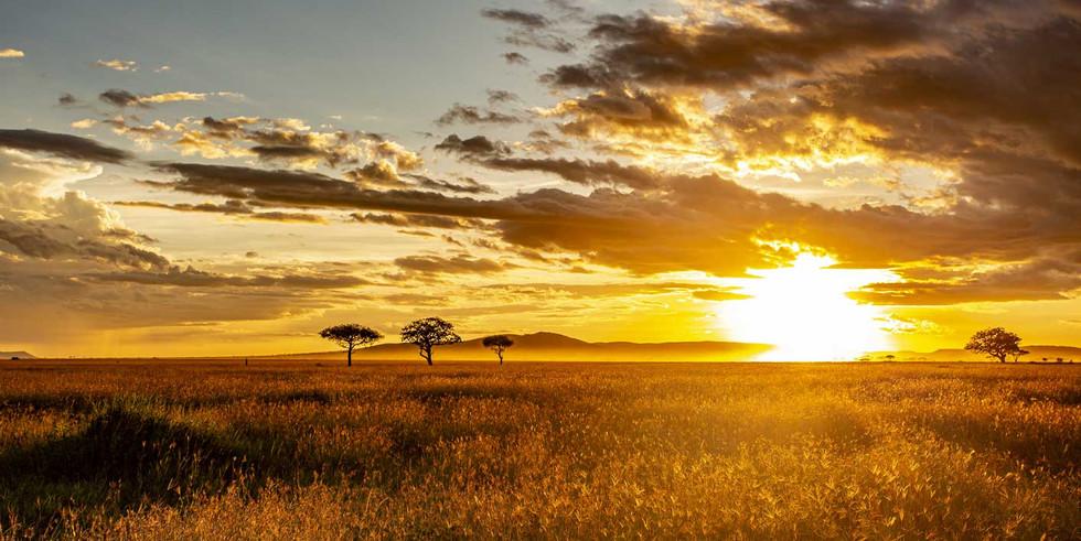 Couché de soleil sur le Serengeti