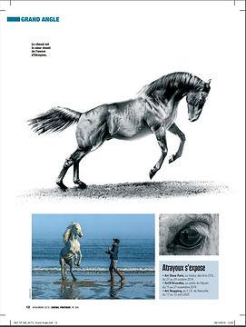 cheval pratique p3.JPG