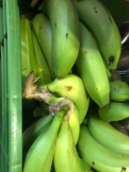 Plátano Colicero