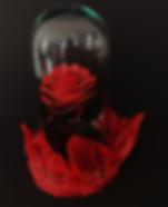 Rosa Eterna Rojas.png
