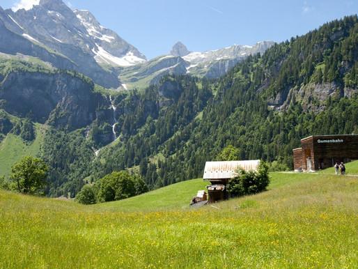 나의 스위스- 박규복씨의 브라운발트 Braunwald 지역