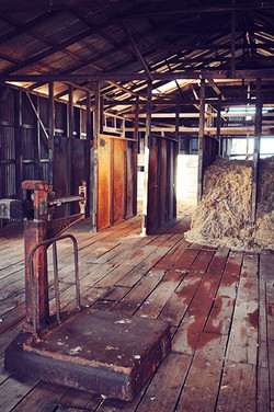 Wool Shed