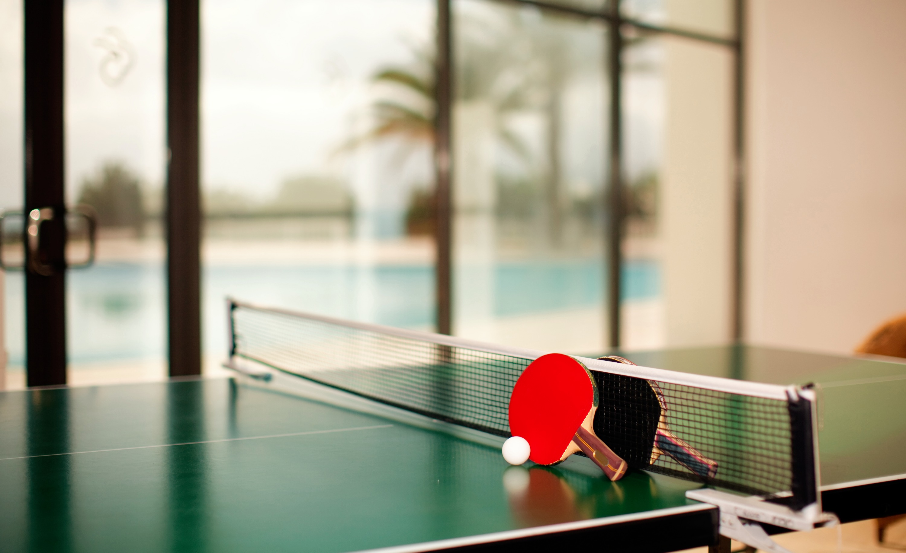Ping Pong Table_edited.jpg