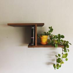Zenith Shelf