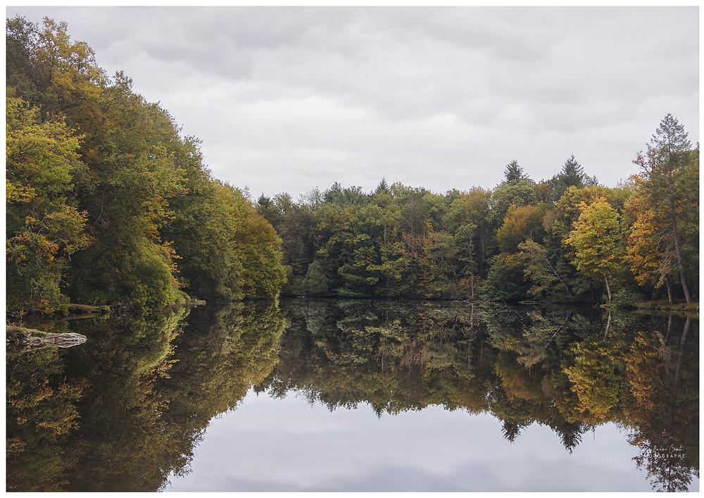 Guillaume Comte Photographe Limoges Mariage Nature Lac Unique Automnale Automne Saison Limousin
