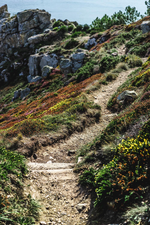 Guillaume Comte Photographe Limoges Limousin Crozon Morgat Bretagne Finistère Nature Paysage Photographie
