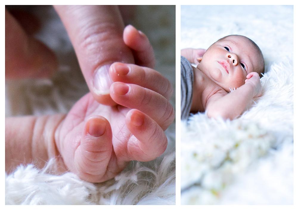 bébé naissance séance photo maternité photographe limoges guillaume comte famille limousin