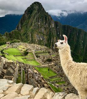An Amazing Peru Adventure