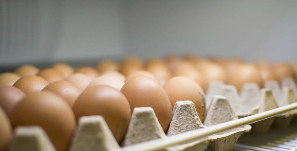 biounverpackt-eier.jpg
