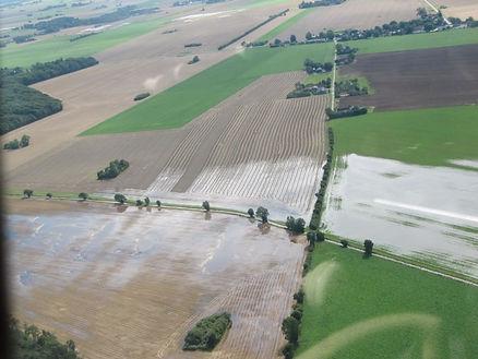 Picture 2 Flooded turnip fields on Lolland during summer. © Peter Ege Olsen.jpg