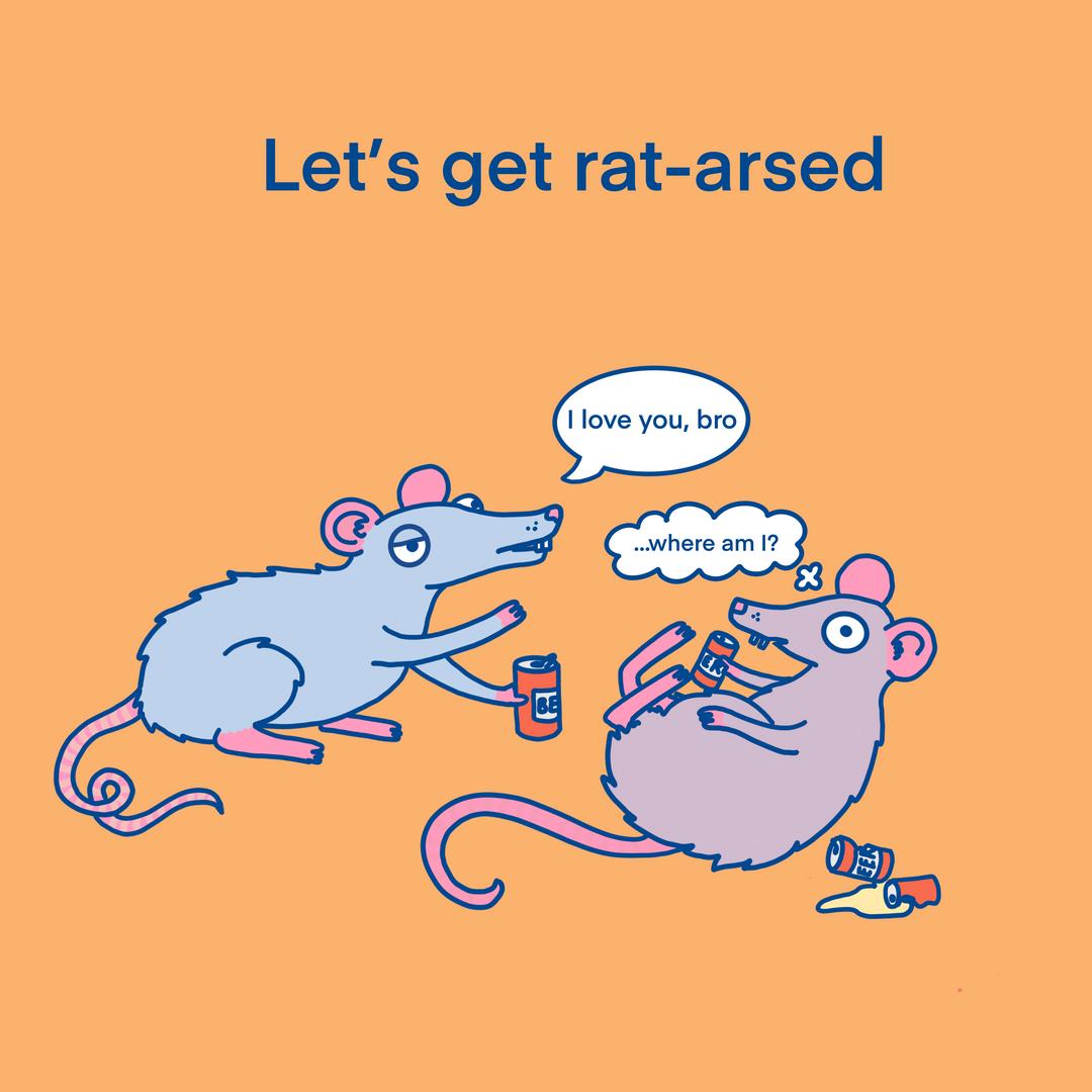 Let's get rat arsed
