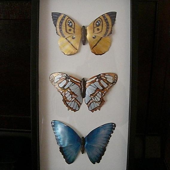 2009 personal piece butterflies.JPG