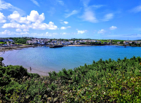 Varied circular coastal walk - Cemaes Bay to Porth Wen (and back, of course!)