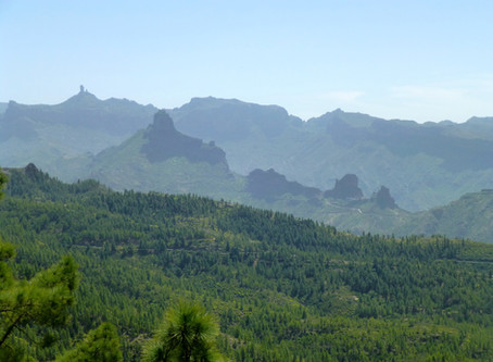 Gran Canaria - lush and green in spring and great for walks