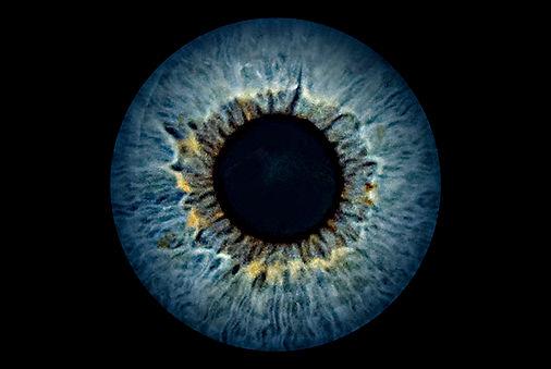 2-Auge.jpg