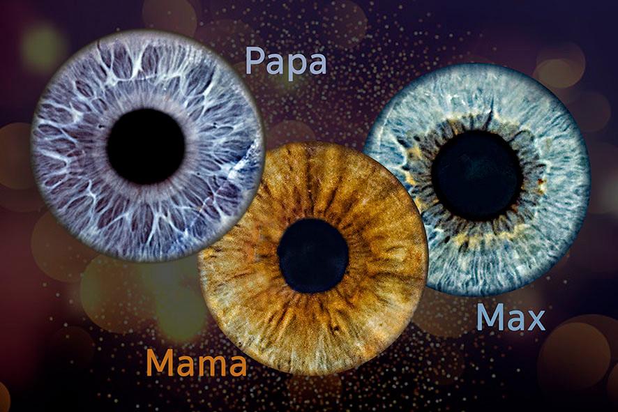 Auge-collage-Iris2.jpg