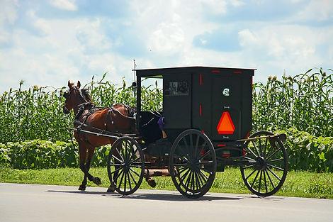 Amish Romance