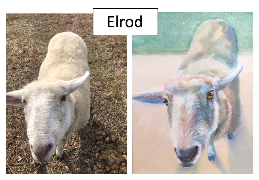 Elrod by Bitsy Boughton