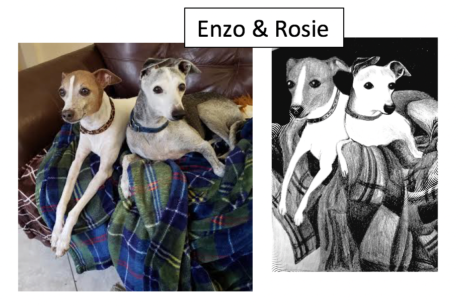 Enzo & Rosie by Rose Greenberg