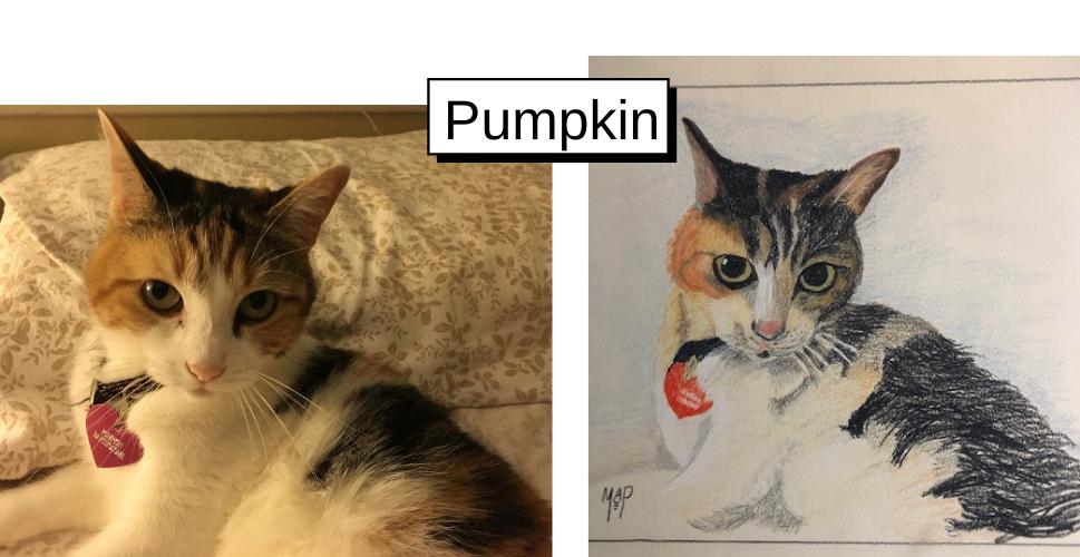 Pumpkin by Margaret Peacock