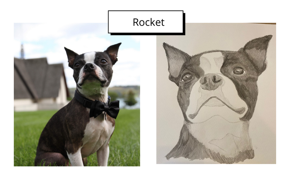 Rocket by Susan Leigh