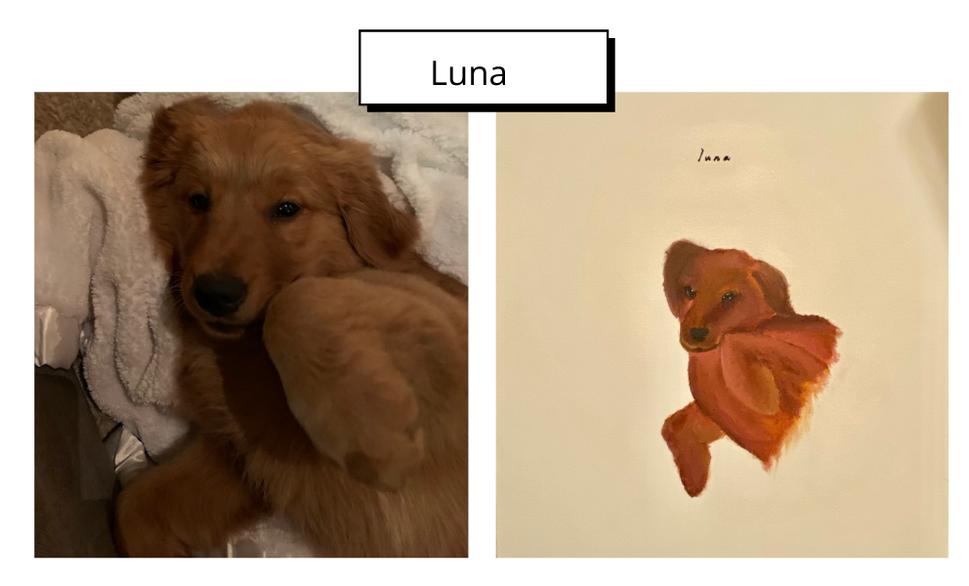 Luna by Claire LoCicero