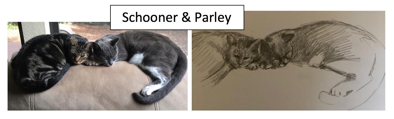 Schooner & Parley by Gina Roman