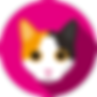 Cat2_1-8.png