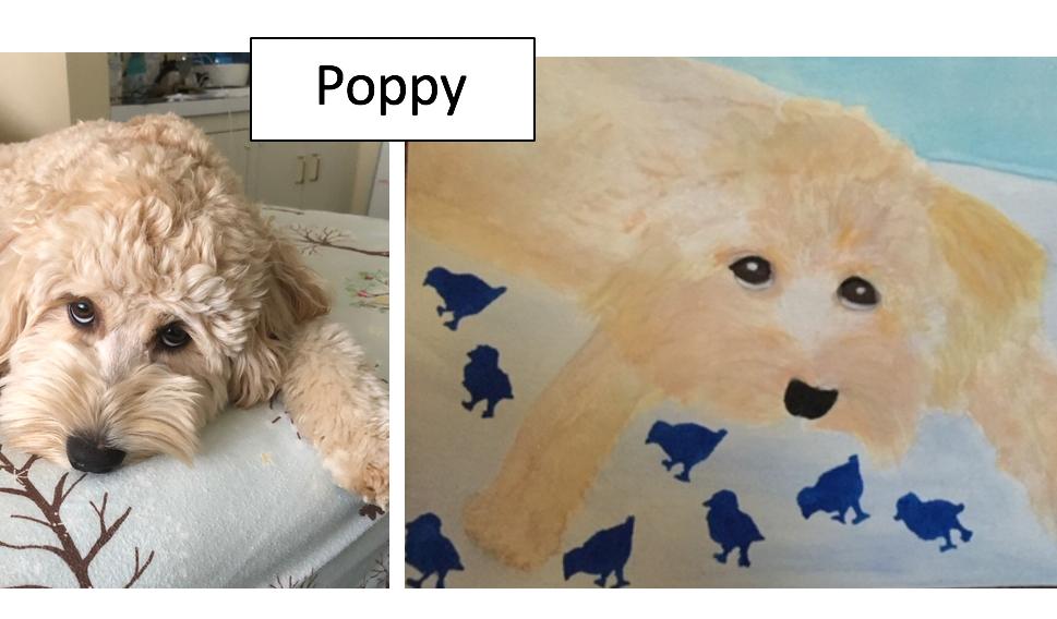 Poppy by Lee Wanetik