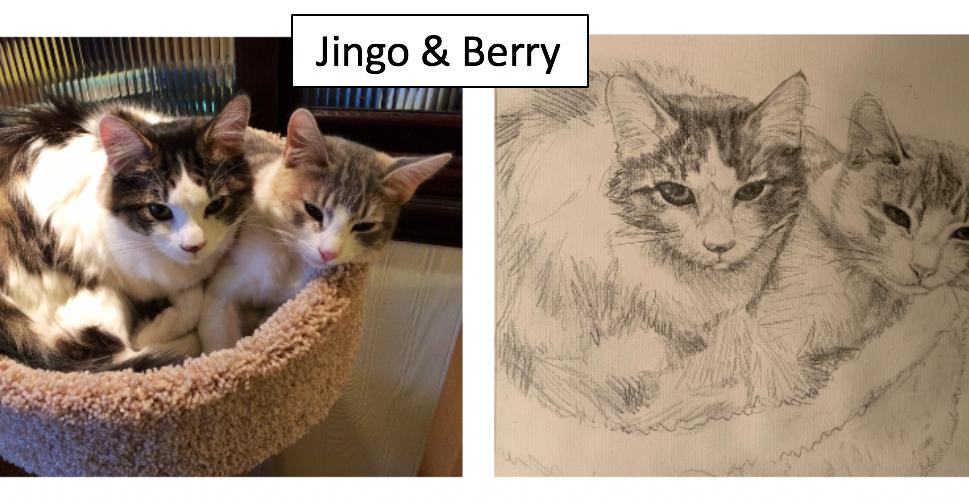 Jingo & Berry by Kateline Walters Siegel