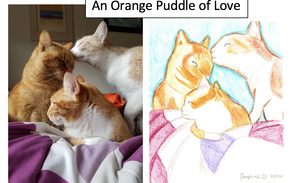 An Orange Puddle of Love by Josephine