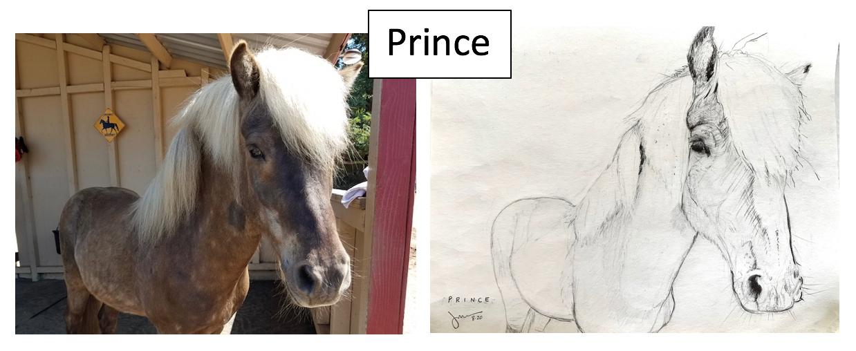 Prince by Jillian Banks Kong