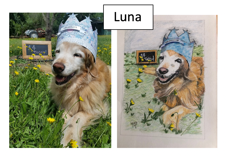 Luna by Margaret Peacock