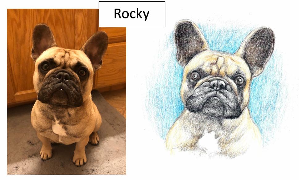 Rocky by Carol Dickason