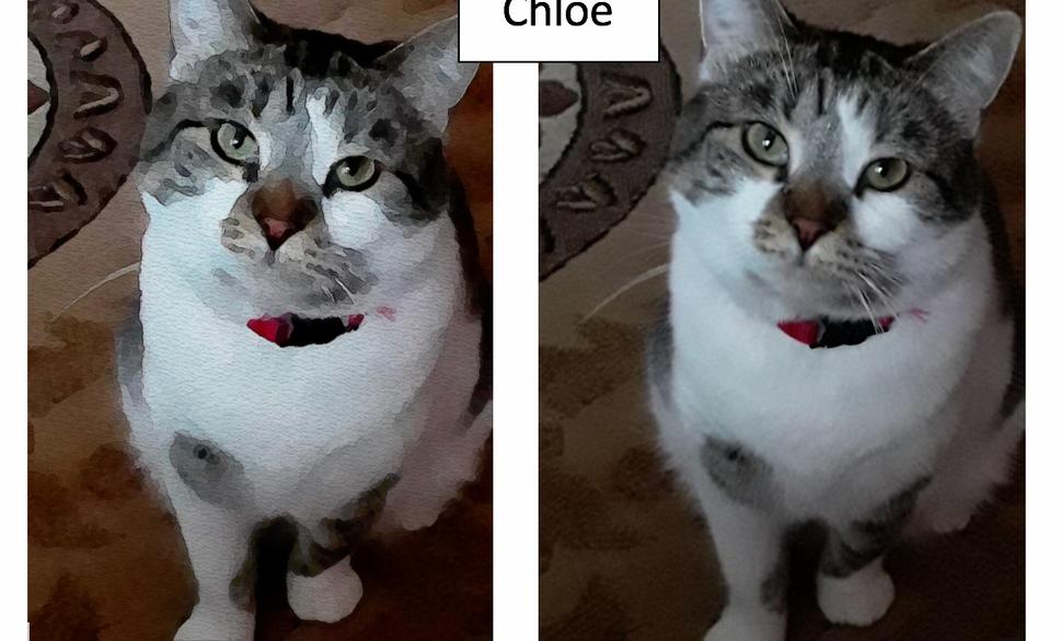 Chloe by Janeane Sanborn