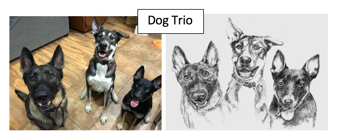 Dog Trio by Kathleen Presentati