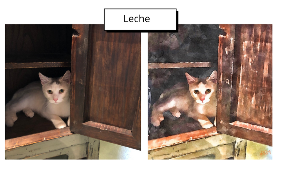 Leche by Lori Beth Merrill