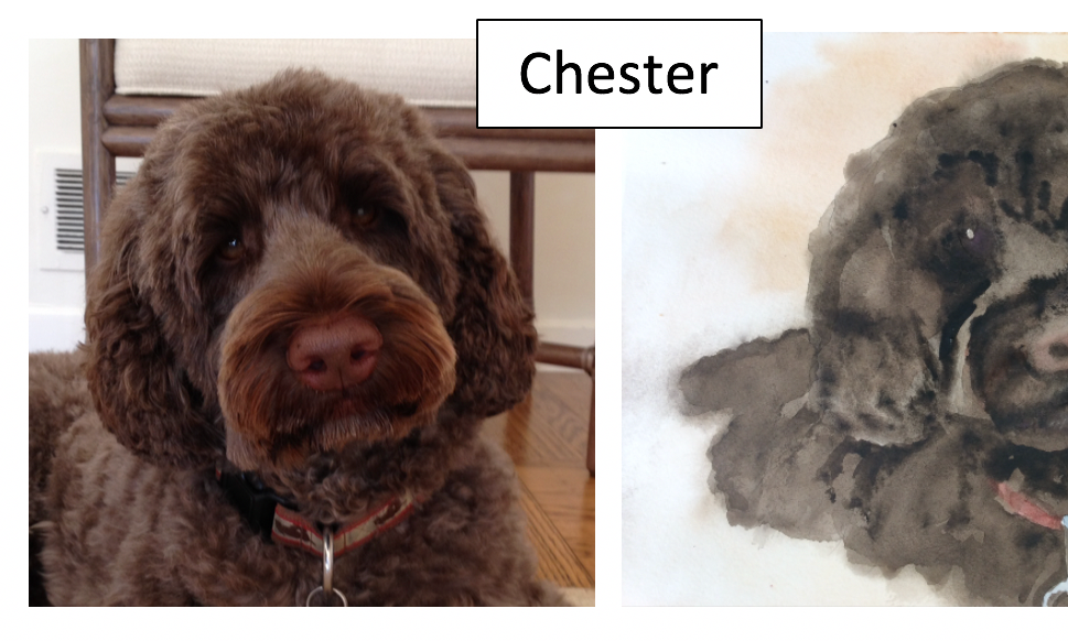 Chester by Barbara Mannle