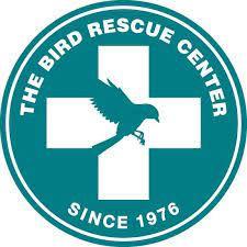 bird rescue.jpg