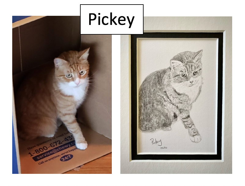 Pickey by Julie Vader