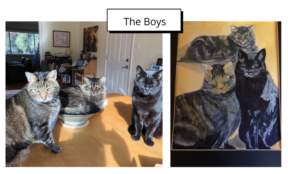 The Boys by Linda Ransom