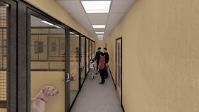 Pet Lifeline Interior 3.jpg