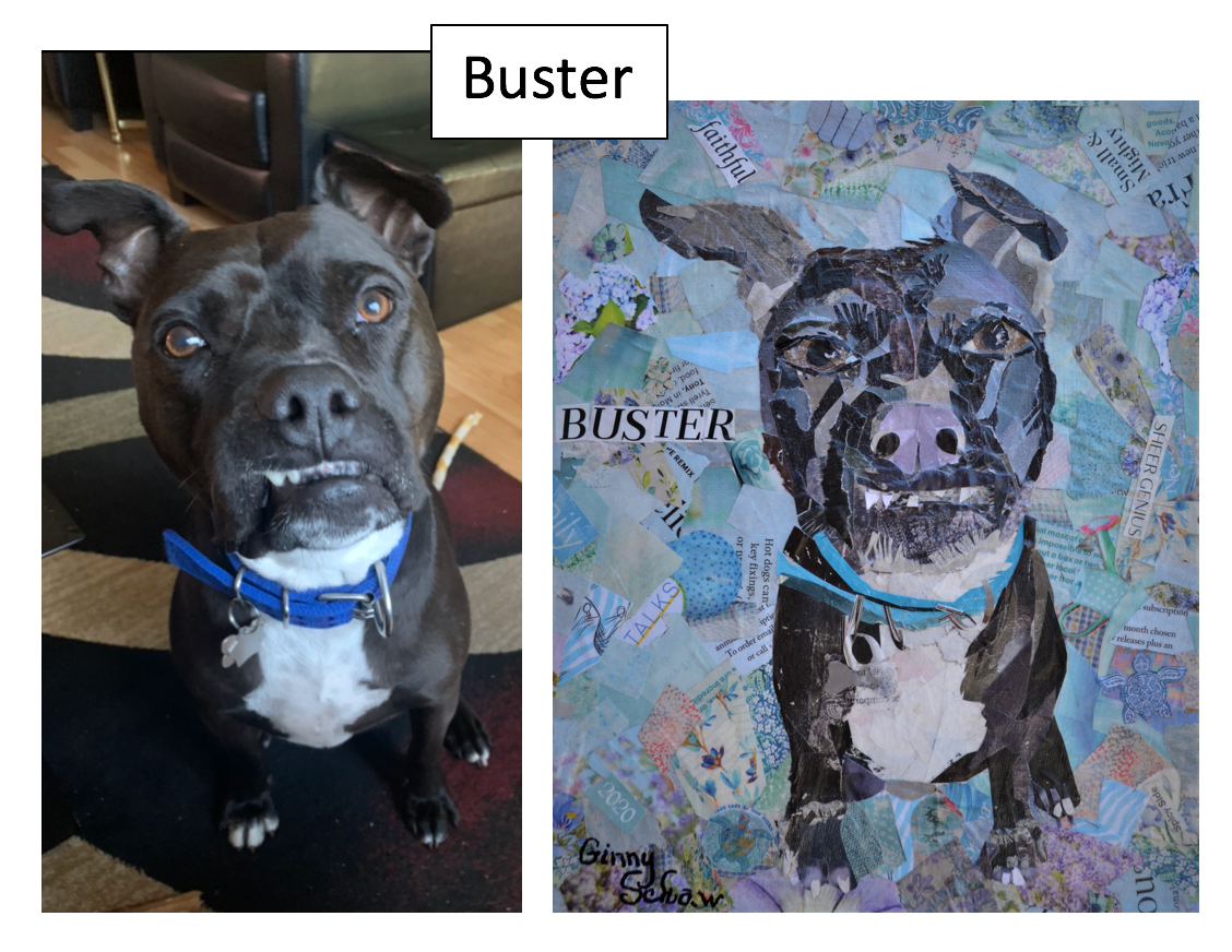 Buster by Ginny Schaw