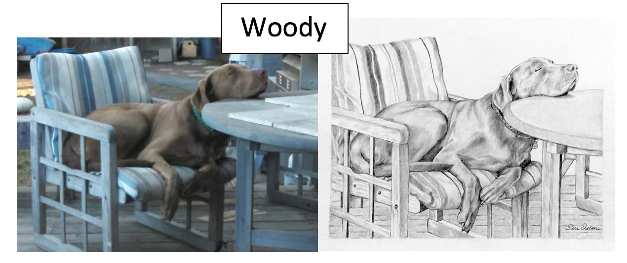 Woody by Sue Osborn
